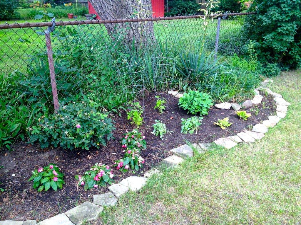 Back garden bed